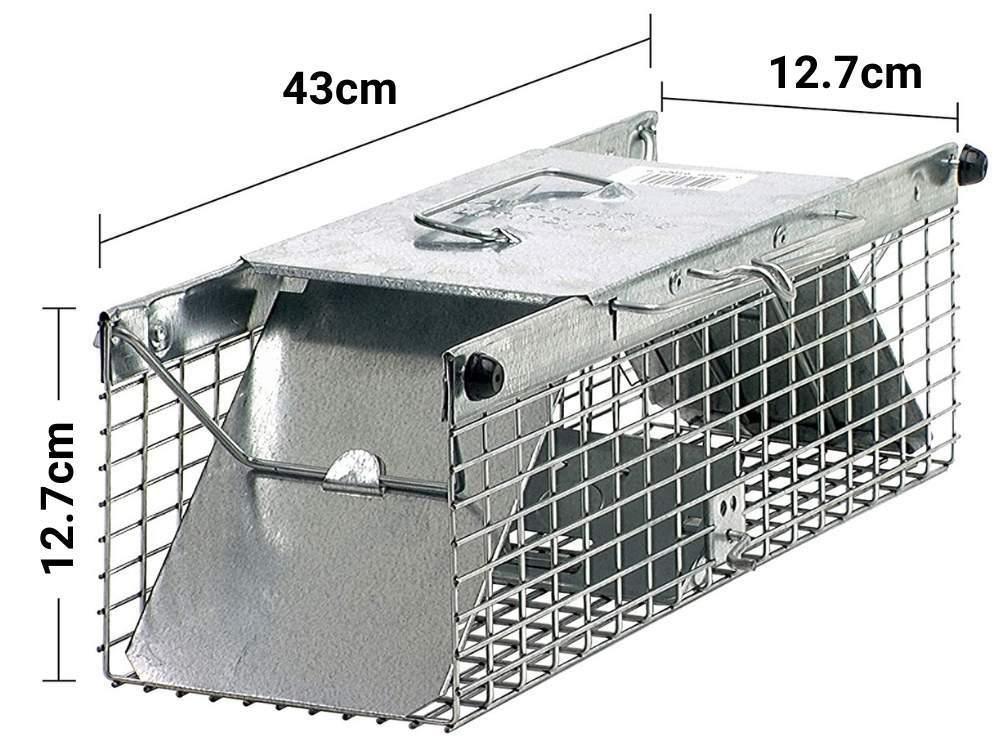 buy squirrel trap cage