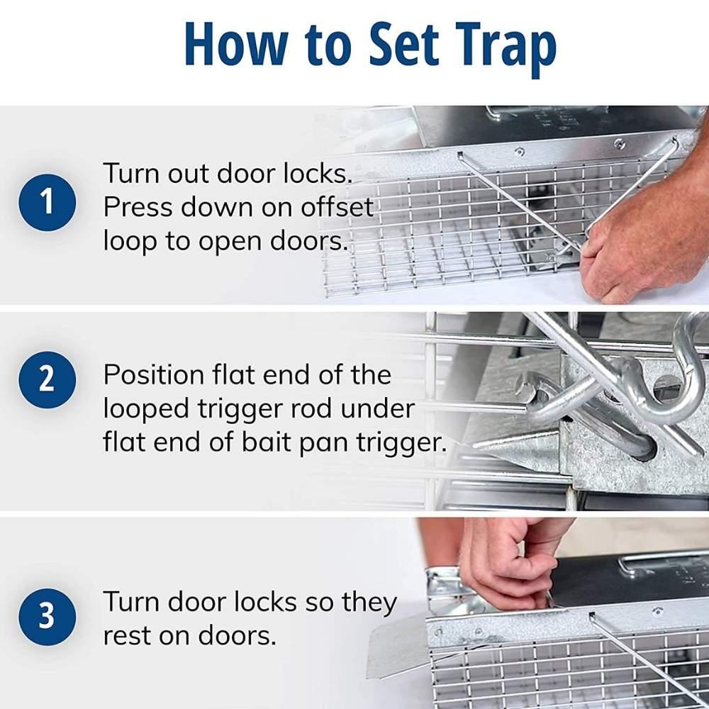 pest squirrel cage trap