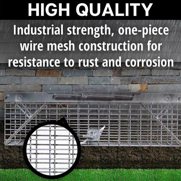squirrels cage trap